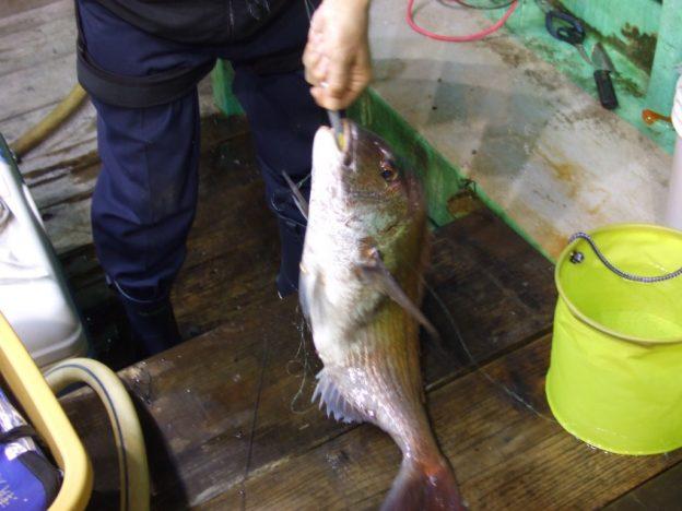 日本海の真鯛釣り船