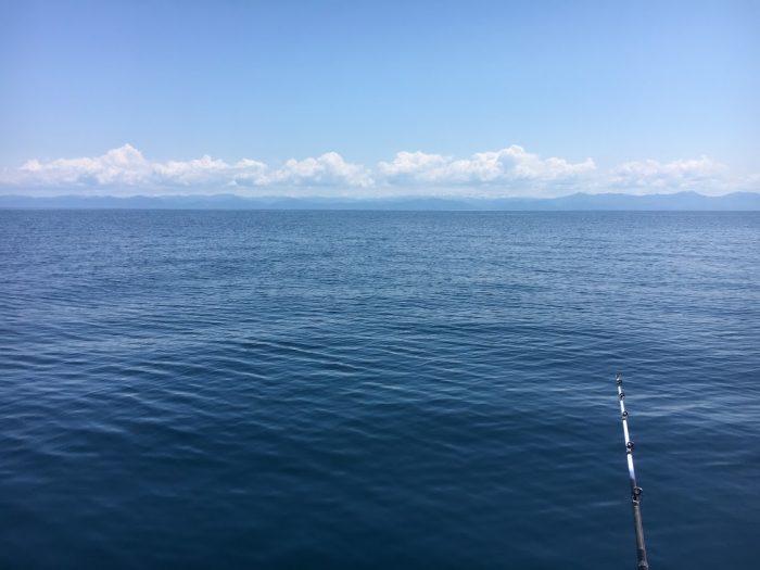 潮が動かないと魚が釣れない