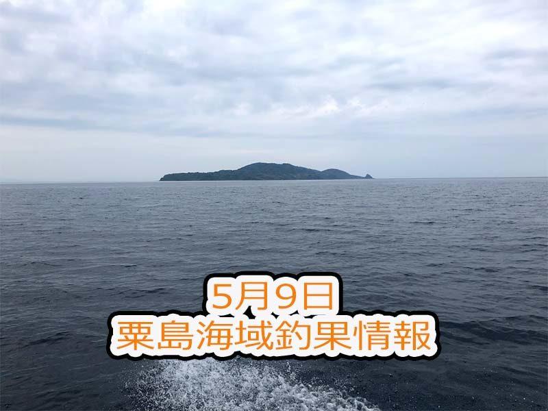 新潟県村上市粟島海域での釣り船釣行ブログ