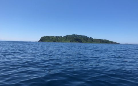 新潟粟島船釣り