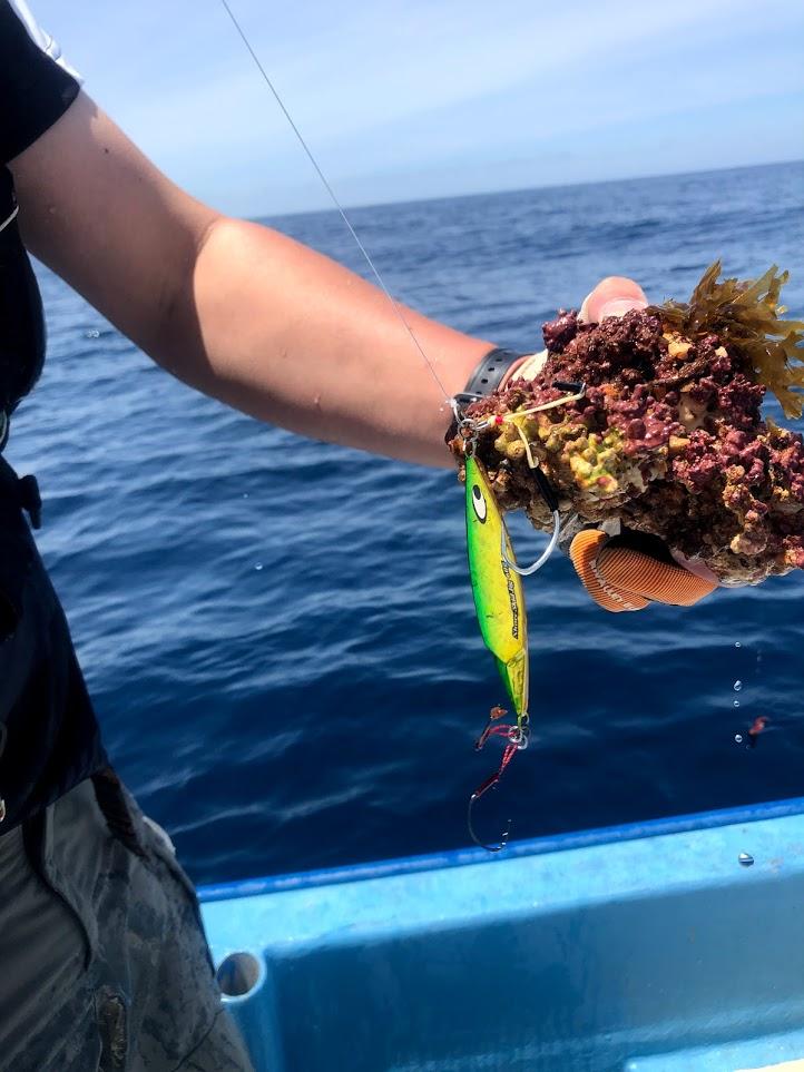 日本海で地球を釣る男