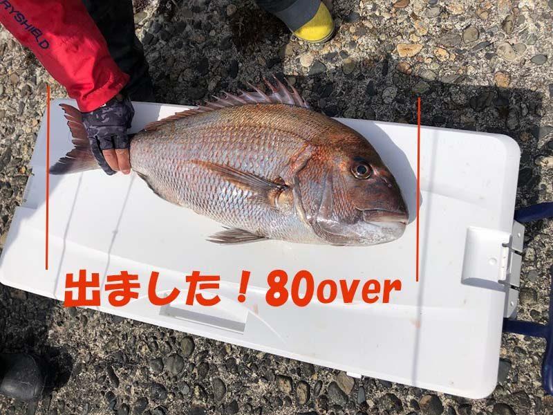 タングステンジグで釣れた80オーバーの真鯛
