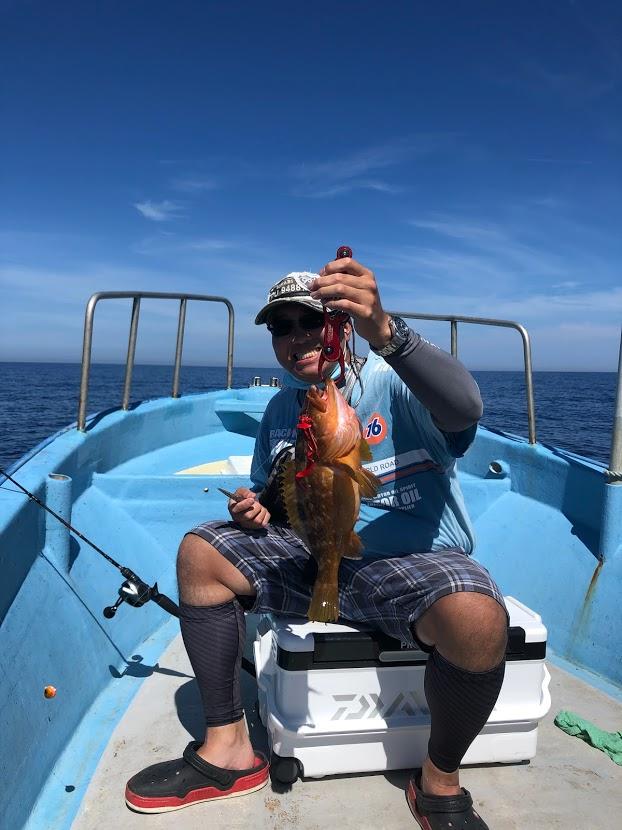サイズが良い高級な魚キジハタFISH