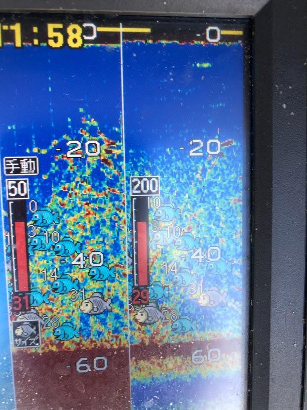 魚群探知機に濃い魚影が映る